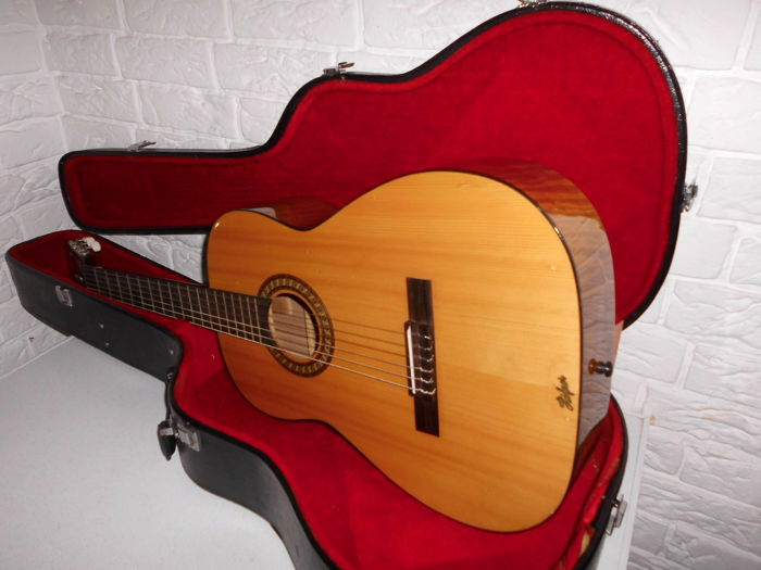 Beautiful Acoustic Vintage Guitar In Original Suitcase From The