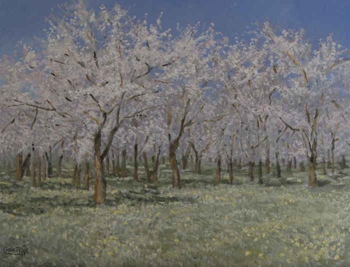 "Chris J. van Dijk (1952) -  """"Orchard with blossom trees"""""