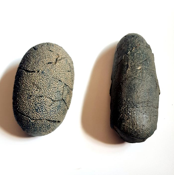 Replica Asiatic Velociraptor Dinosaur Eggs - 140 and 180mm  (2)