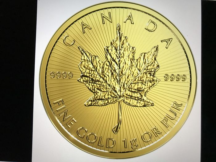 Canada - 50 Cents 2018 Maple Leaf - 1g - Gold