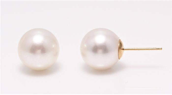 NO RESERVE PRICE - 18 kt. Yellow Gold - 10x11 mm Lustrous South Sea Pearls - Earrings