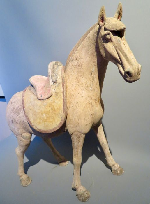 Pottery Tang dynasty horse with TL test - 37 x 39,5cm