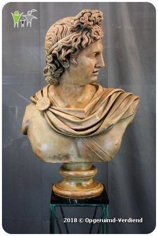 A large bust of Apollo Belvedere on a pedestal  - Terracotta - 19e eeuw