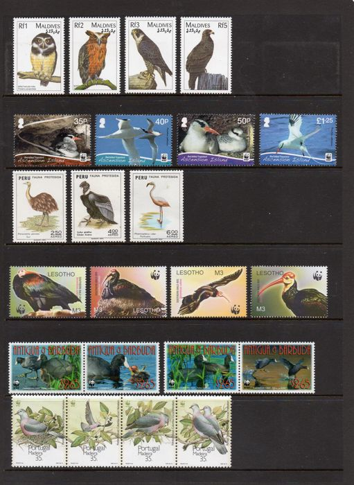 Antigua & Barbuda (1981-now) Antigua Stamps Bird And Butterfly Caribbean