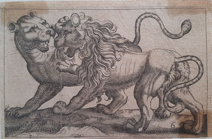 Antonio Tempesta (1555 – 5 August 1630) (after) - A Lion and Tiger fighting each other