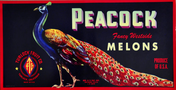 J.H. Smith - Peacock Melons - ca 1924