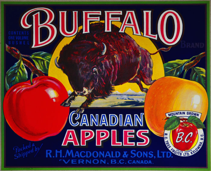 Anonymous - Buffalo Canadian Apples - ca 1940