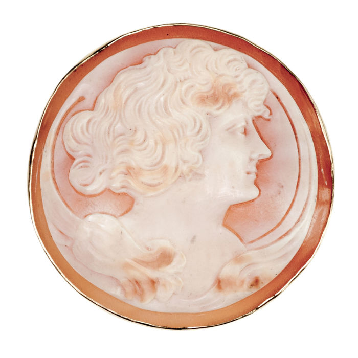 Cameo brooch Shell in 15k Gold.