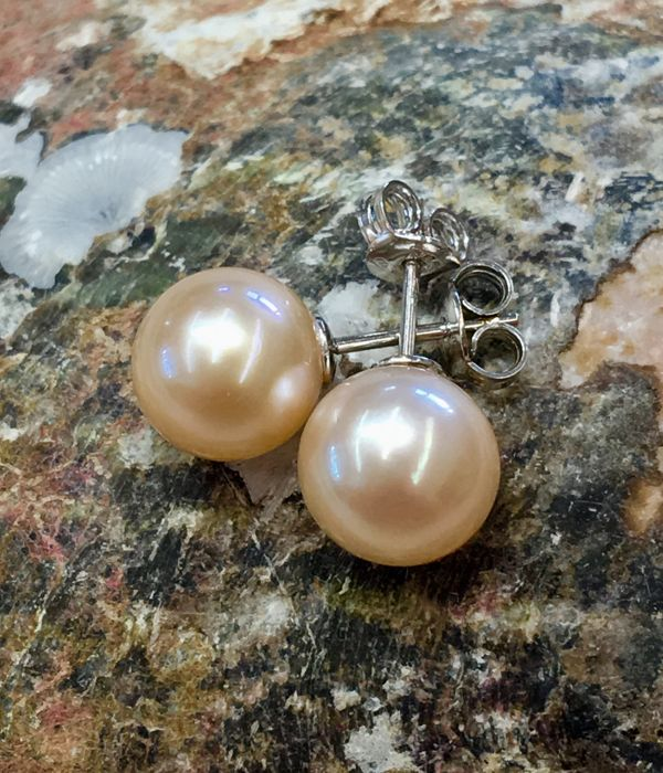 Beautiful pair of earrings in 18K WG with Freshwater Pearls RD Ø 10-10,5mm #NO RESERVE PRICE#