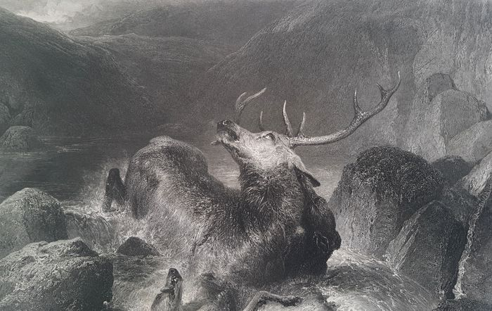 John Cousen (1804–1880) after Landseer - The Death of the Stag