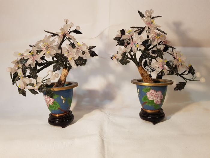 Pair of hard stone plants in Cloisonné - China - circa 1980-2000
