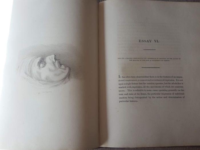 Charles Bell Essays On The Anatomy Of Expression In Painting
