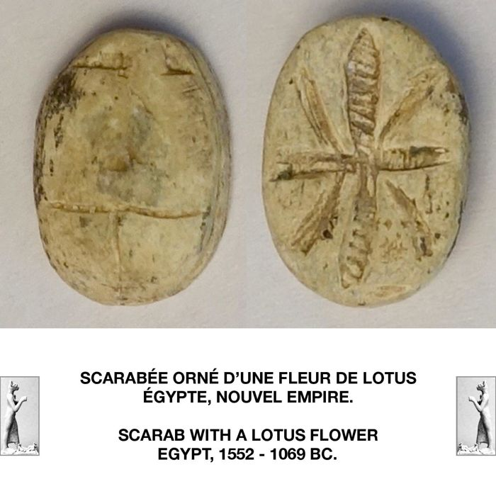 Ancient Egyptian Steatite Scarab Decorated With A Lotus Flower 1