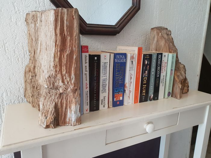 Pair of Petrified Wood Book-ends - 28 and 29cm - 24kg