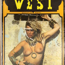 Pulp Fiction;  Lot with 13 Sexy West books -  1970's