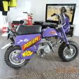 Moped Auction (Mini Bikes)