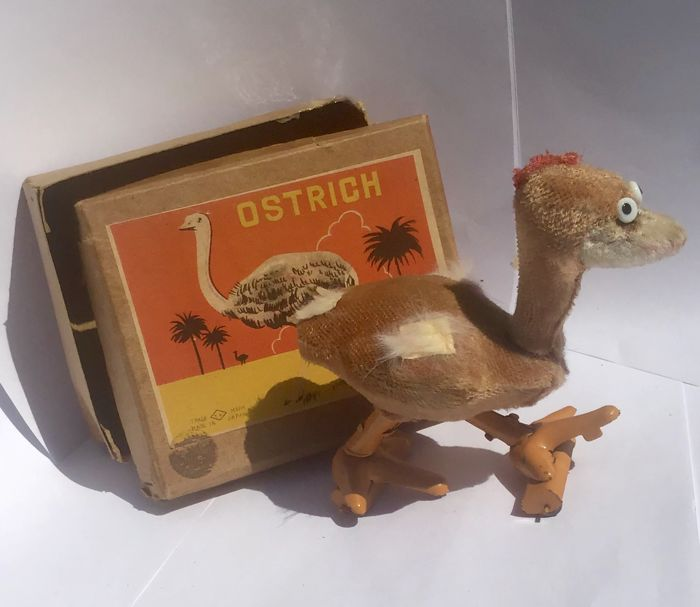 TN, Japan - The Ostrich