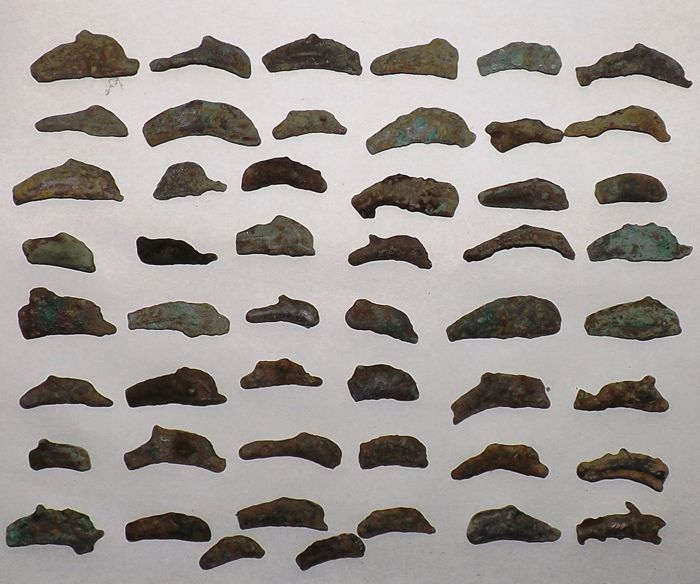 Greece - Olbia, lot of 50 cast examples of dolphin money, 5th-4th century B.C.