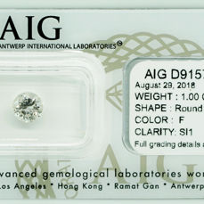 Diamond - 1.00 ct - Briliant - F - SI1