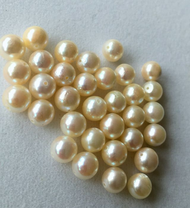 33 pcs White, - No Reserve - Akoya Saltwater Cultured  Pearls - 58.60 ct