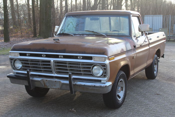 Ford USA - F100 - NO RESERVE  - 1975