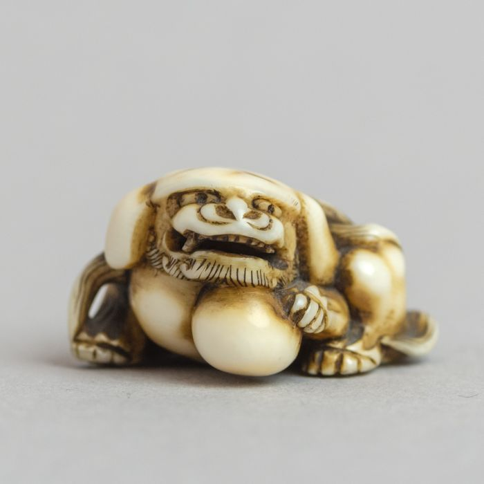 Netsuke (1) - Ivoor - SHI-SHI with the pearl of wisdom  - Unsigned - Japan - Edo Periode (1600-1868)