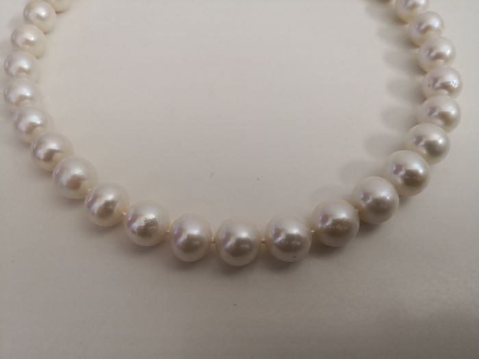 925 Freshwater pearls, Silver - Necklace