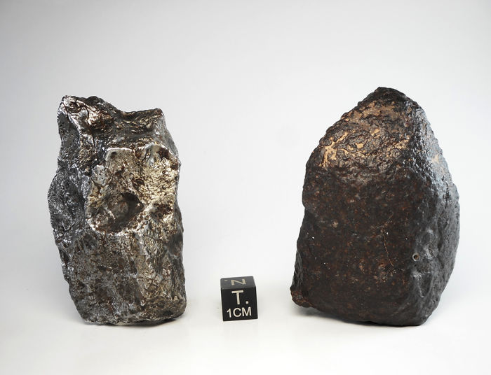Two meteorites!Campo del Cielo-223.6 G. NWA 11140, H3-154 g. - 377.6 g Minerals & Meteorites for sale