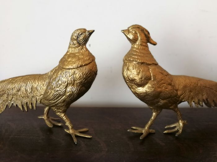 Couple Pheasants (2) - Belgium
