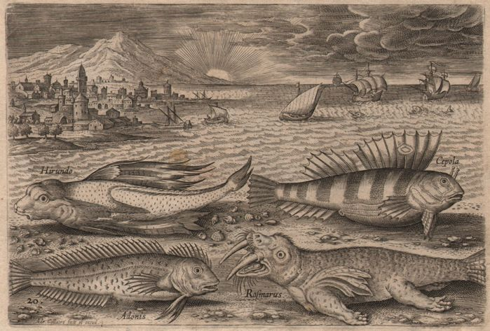 Adriaen Collaert (1560-1618) - Seashore with walrus, flying fish and Breugel ships