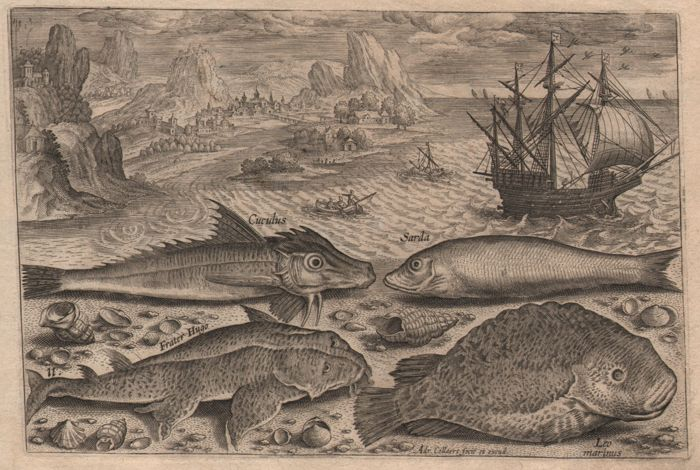 Adriaen Collaert (1560-1618) - Landscape with Fish and Pieter Breugel Vessel