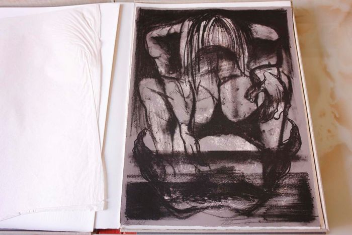 Dante Alighieri Rico Le Brun Drawings For Dante S Inferno One Of 100 Copies With 7 Original Signed Lithographs 1963 Catawiki