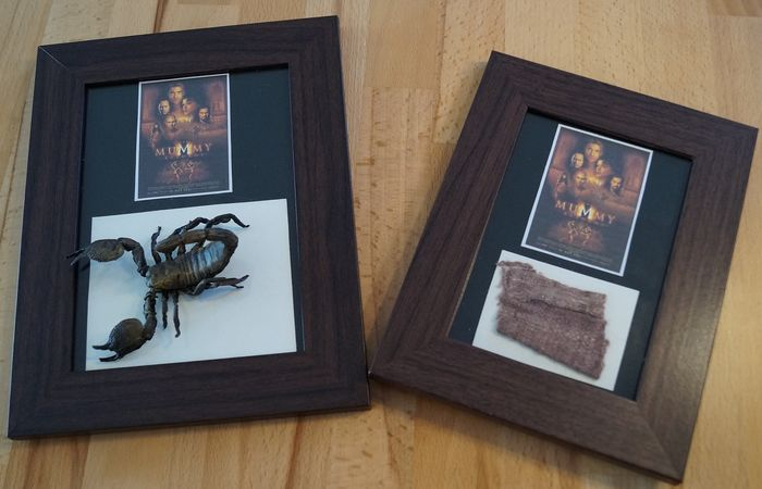 The Mummy Returns (2001)  - Set of 2 props -  FX Rubber Scorpion & Mummy bandage - Framed Displays - with Coa