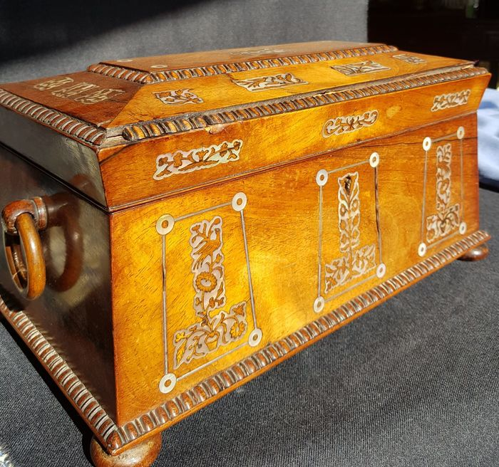 A Victorian Sarcophagus Tea Caddy - Mother of pearl, Rosewood - mid 19th century