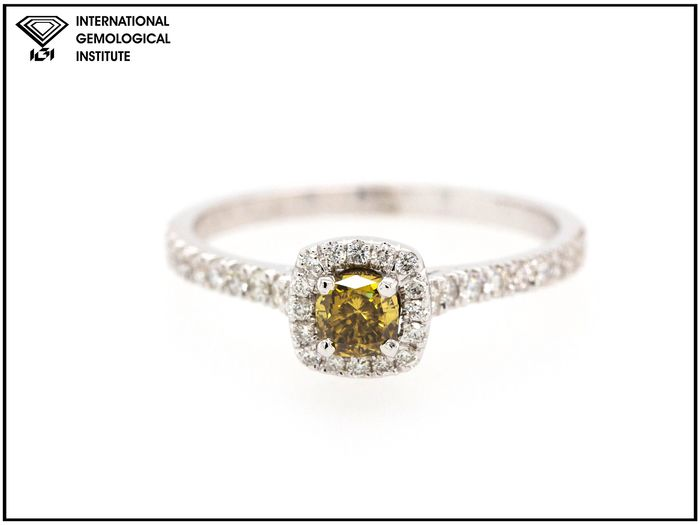 14 kt. White gold - Ring - 0.66 ct Diamond - Fancy Deep Grey-Yellow - SI1