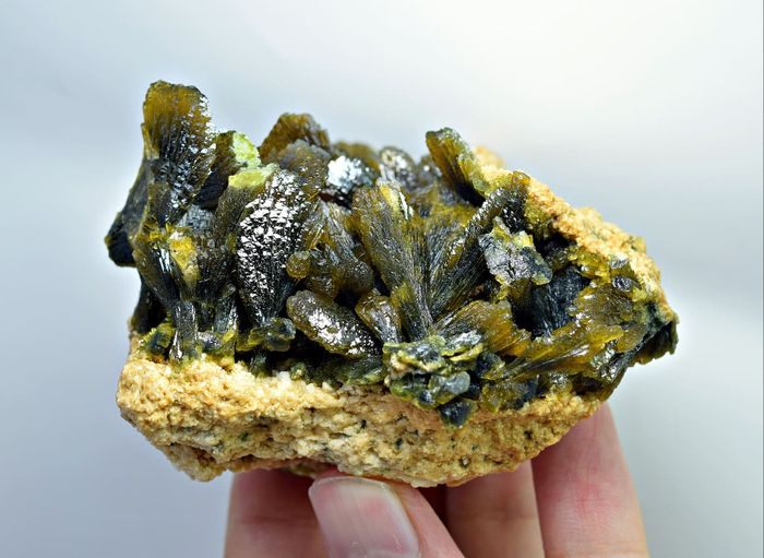 Epidote Crystal cluster - 73×60×55 mm - 185 g - (1)