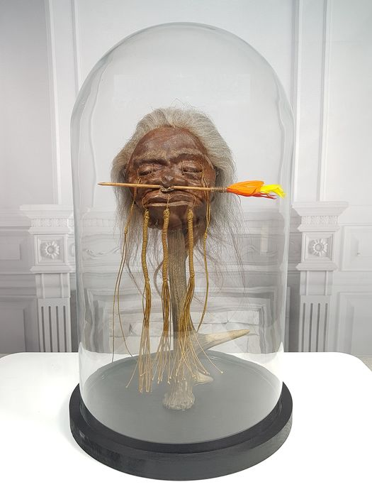 Replica Jivaro Arrow-nose Warrior Shrunken Head on antler under large glass dome - Homo replicans - 40×23×23 cm