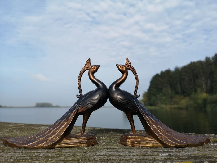 Table pieces - pheasants (2) - Iron (cast/wrought)