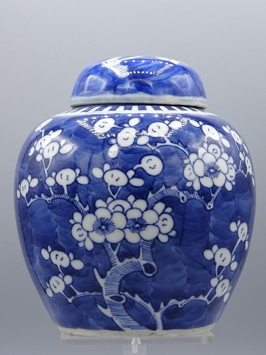 Ginger jar - Porcelain - A prunus decor reverse painted ginger jar with lid  - China - Early 20th century