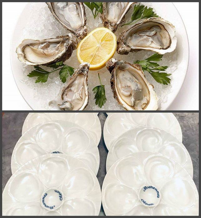 Pillivuyt - large plates with oysters and seafood - Porcelain