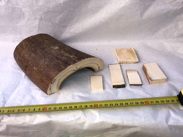 Woolly Mammoth - Tusk and Tusk Bark pieces - Mammuthus primigenius (6)