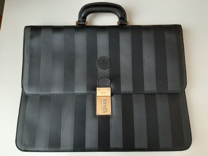 Fendi carrying case