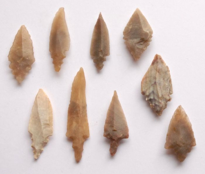 Prehistoric, Neolithic Flint Lot with 9 arrow points 33 - 55 mm - (9)