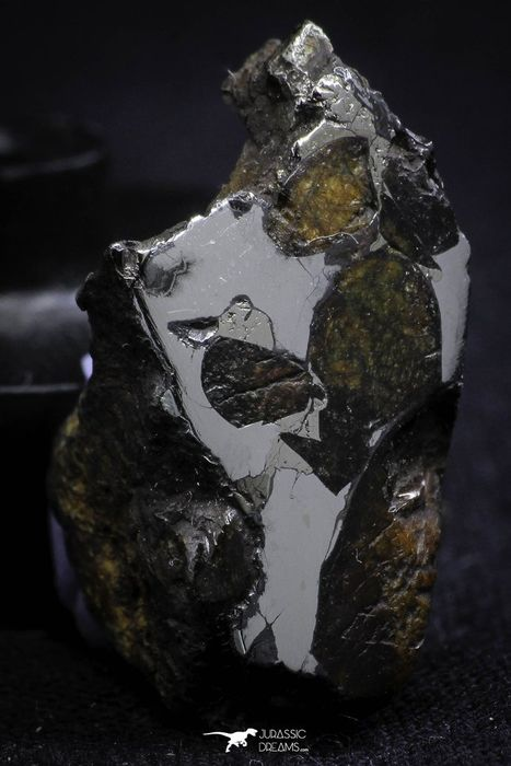 Sericho Pallasite Meteorite Polished Section - 7.6 g