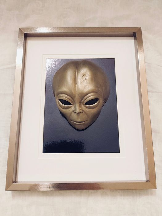 Roswell Alien Head - Yeso
