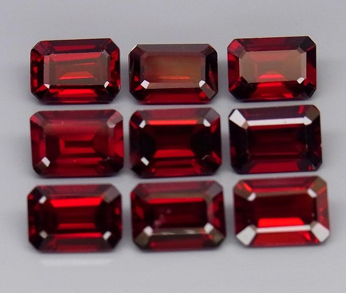 9 pcs  Granaat - 10.20 ct