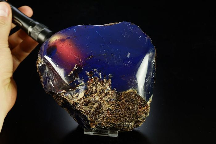Blue Amber polished genuine piece with fantastic beautiful colors and shape - 130×120×60 mm - 566 g