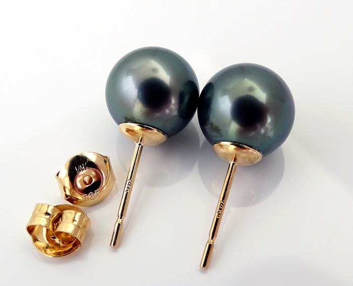 NO RESERVE PRICE - FedEx DELIVERY - Tahitian pearls, Beguiling Blue-Green 9.71 mm, 9.75 mm - Earrings, 14 kt. Yellow Gold
