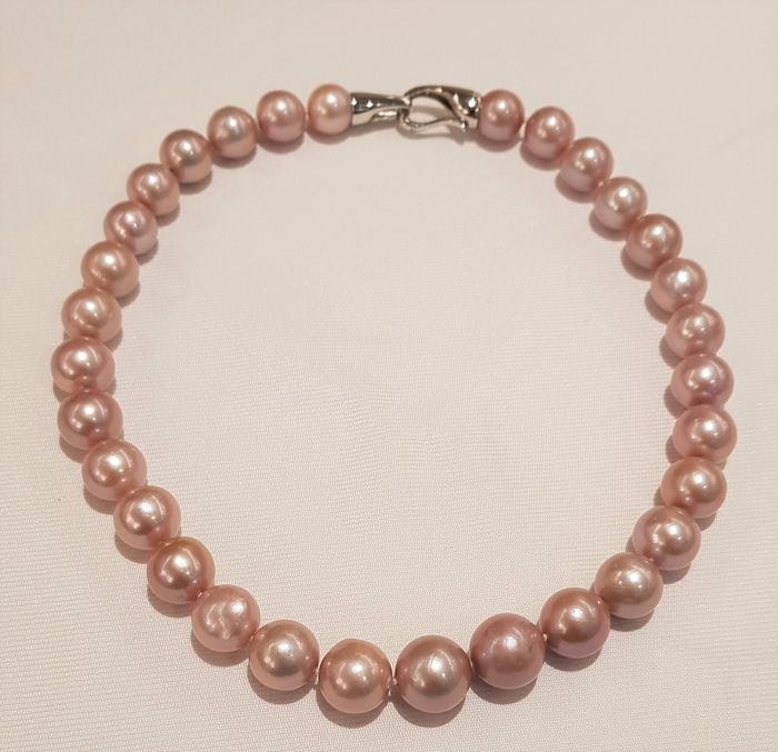 NO RESERVE PRICE - 925 Silver - 12x15mm Edison Pearls - Necklace