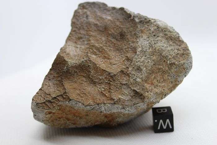 OFFICIALLY CLASSIFIED NWA 12513 Achondrite Meteorite - 386 g - (1)